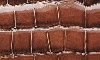 Porosus湾鳄皮