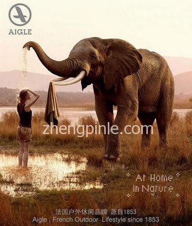 法国AIGLE艾高户外品牌宣传海报