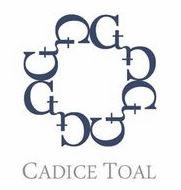 美国Cadice Toal品牌标志