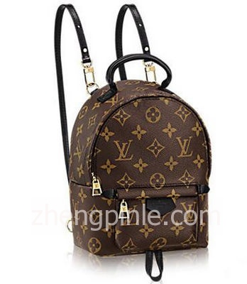 Louis Vuitton Monogram Mini迷你双肩包